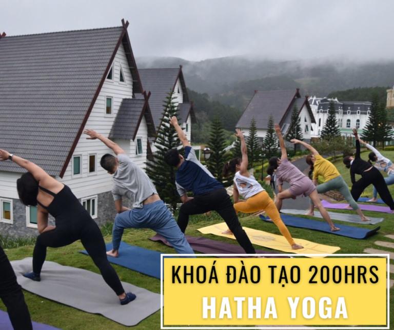 Đào tạo Hatha Yoga 200hrs
